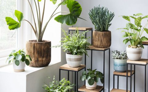 Fresh Ideas to Bring the Outdoors Inside